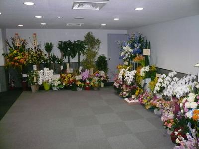 20070314_242